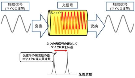 ファイバ無線技術解説