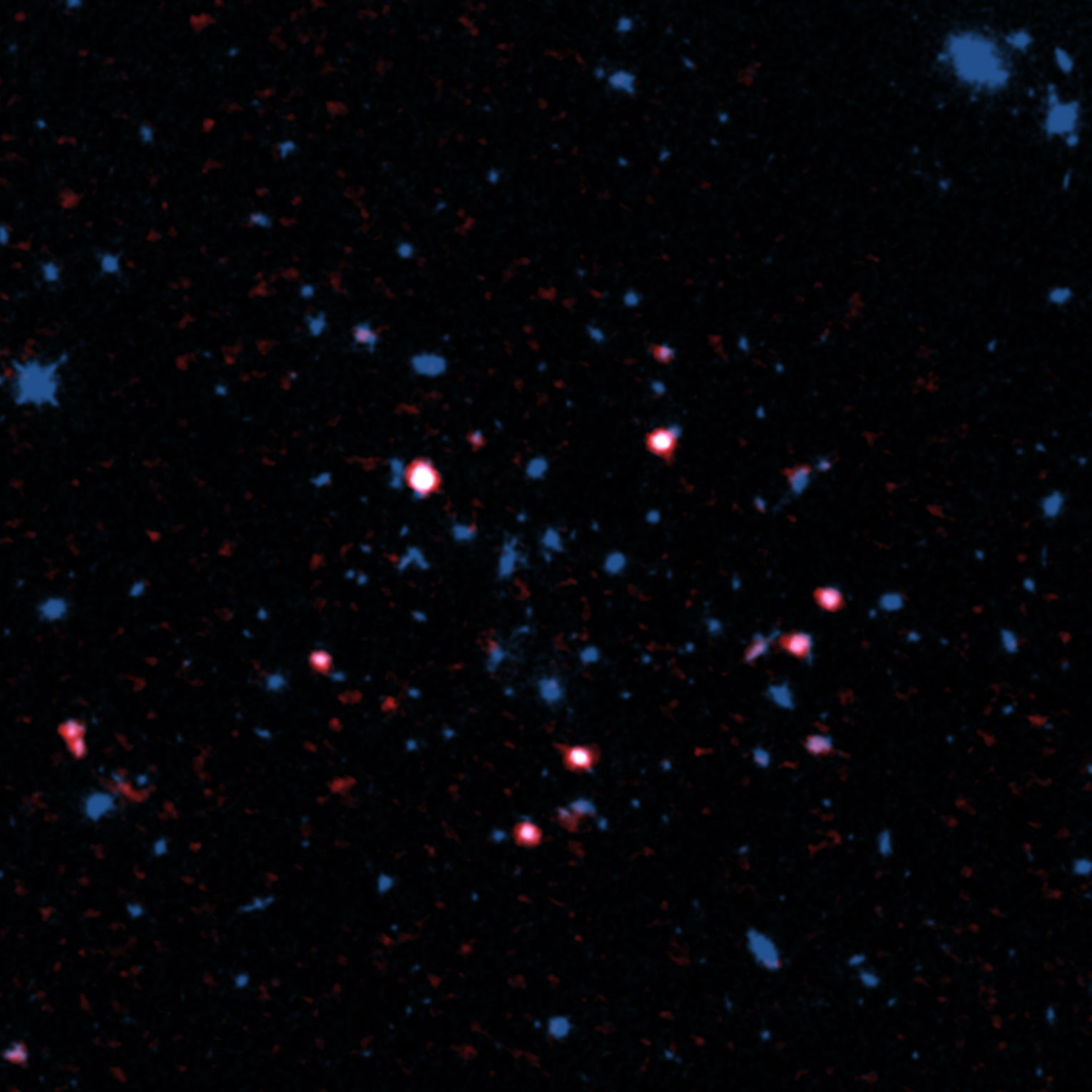 Galaxy cluster XMMXCS J2215.9–1738 observed with ALMA and the Hubble Space Telescope. Gas rich galaxies detected with ALMA are shown in red . Most gas rich galaxies are located in the outer part, not the center, of the galaxy cluster. アルマ望遠鏡とハッブル宇宙望遠鏡で観測した、94億光年かなたの銀河団XMMXCS J2215.9–1738。アルマ望遠鏡が見つけたガスに富む銀河を赤色で表示しています。これらの銀河が、銀河団の中心部には存在しないことがわかります。 Credit: ALMA (ESO/NAOJ/NRAO), Hayashi et al., the NASA/ESA Hubble Space Telescope