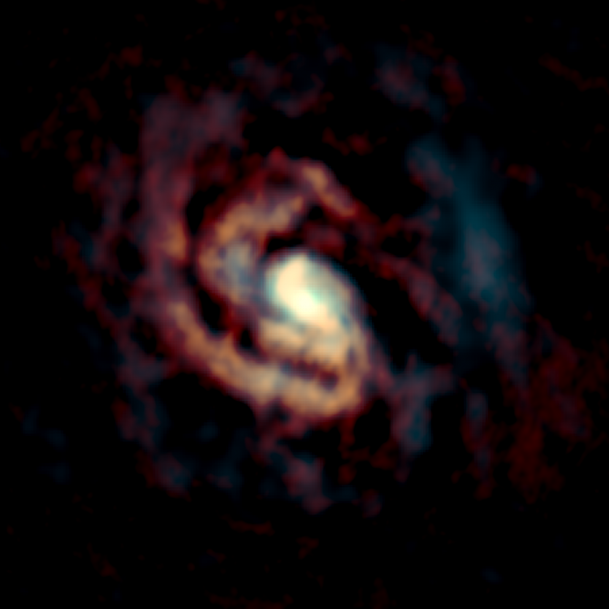 ALMA image of the gas around the supermassive black hole in the center of the Circinus Galaxy