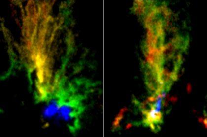アルマ望遠鏡で撮影された孔雀分子雲