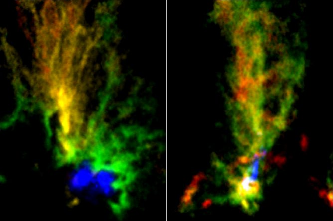 Two Cosmic Peacocks show Violent History of the Magellanic Clouds