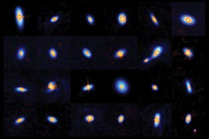 オリオン座の原始星たち