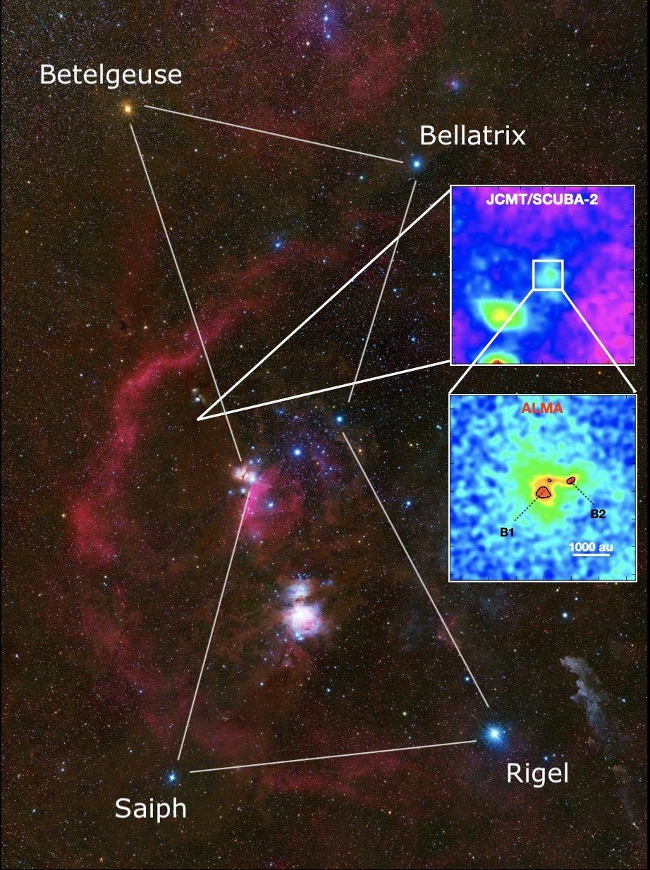 Stellar Seeds Detected