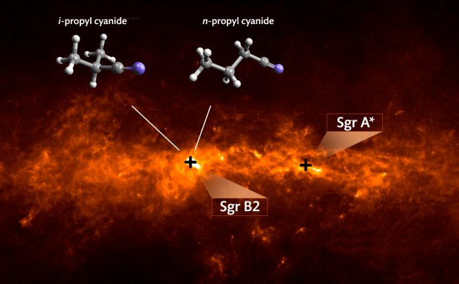 ALMA Finds that Organic Molecules are Branching Out