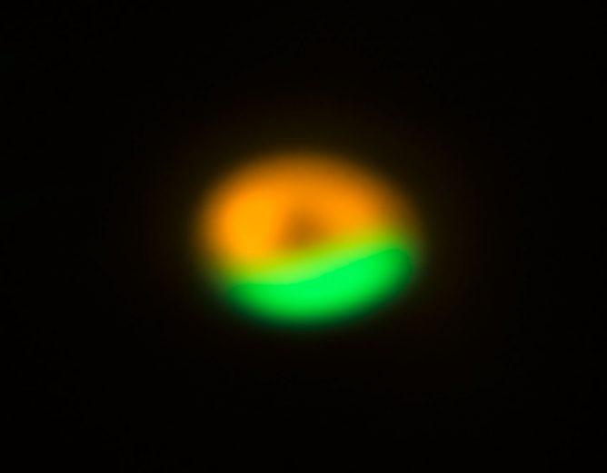 アルマ望遠鏡が発見した彗星のゆりかご
